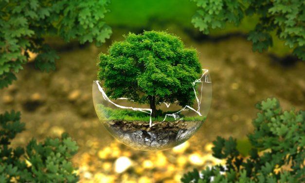 Logement neuf : les choses à savoir sur la RE2020 nouvelle norme environnementale